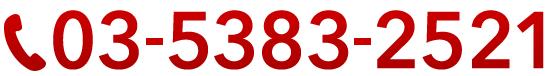 03-5383-2521